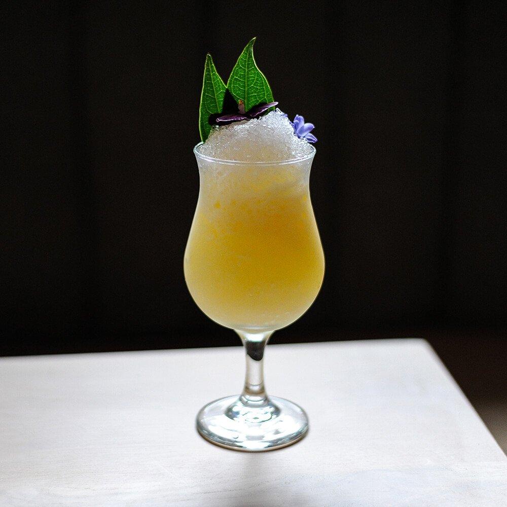 ECH-002-Recipes-Rum-Pina-Colada-2-Web