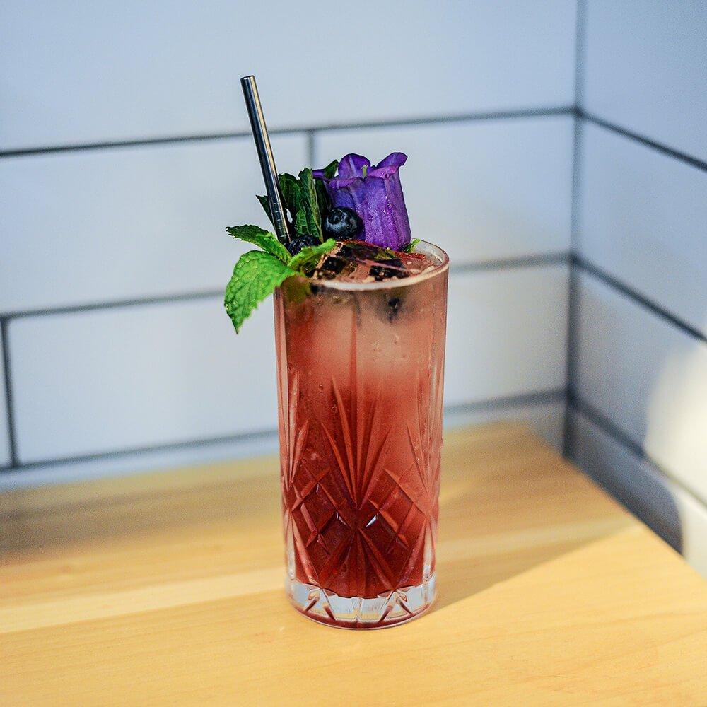 Echo-Recipes-Rum-R23-BBM-Blueberry-Mint-Mojito-Web